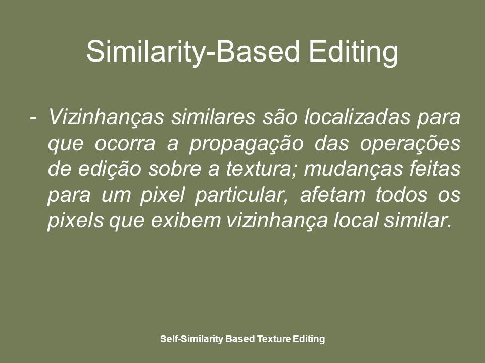 Self-Similarity Based Texture Editing Similarity-Based Editing - Vizinhanças similares são localizadas para que ocorra a propagação das operações de edição sobre a textura; mudanças feitas para um pixel particular, afetam todos os pixels que exibem vizinhança local similar.