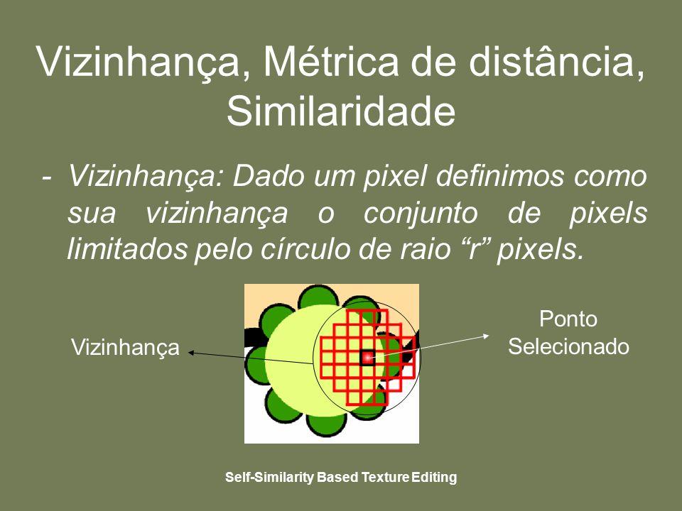 Self-Similarity Based Texture Editing Vizinhança, Métrica de distância, Similaridade - Vizinhança: Dado um pixel definimos como sua vizinhança o conjunto de pixels limitados pelo círculo de raio r pixels.