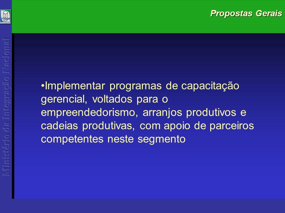 Propostas Gerais Implementar programas de capacitação gerencial, voltados para o empreendedorismo, arranjos produtivos e cadeias produtivas, com apoio de parceiros competentes neste segmento