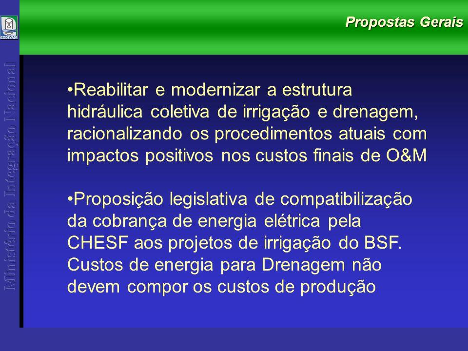 Propostas Gerais Reabilitar e modernizar a estrutura hidráulica coletiva de irrigação e drenagem, racionalizando os procedimentos atuais com impactos positivos nos custos finais de O&M Proposição legislativa de compatibilização da cobrança de energia elétrica pela CHESF aos projetos de irrigação do BSF.