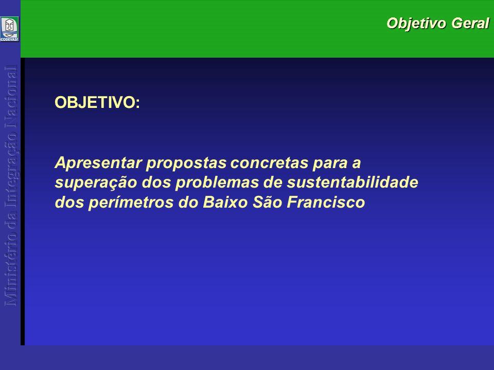 Objetivo Geral OBJETIVO: Apresentar propostas concretas para a superação dos problemas de sustentabilidade dos perímetros do Baixo São Francisco