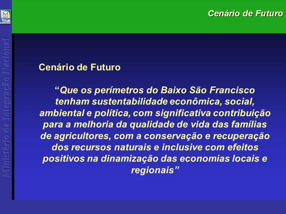 Cenário de Futuro Que os perímetros do Baixo São Francisco tenham sustentabilidade econômica, social, ambiental e política, com significativa contribuição para a melhoria da qualidade de vida das famílias de agricultores, com a conservação e recuperação dos recursos naturais e inclusive com efeitos positivos na dinamização das economias locais e regionais
