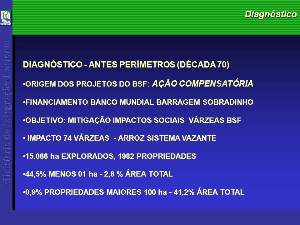 Diagnóstico DIAGNÓSTICO - ANTES PERÍMETROS (DÉCADA 70) ORIGEM DOS PROJETOS DO BSF: AÇÃO COMPENSATÓRIA FINANCIAMENTO BANCO MUNDIAL BARRAGEM SOBRADINHO OBJETIVO: MITIGAÇÃO IMPACTOS SOCIAIS VÁRZEAS BSF IMPACTO 74 VÁRZEAS - ARROZ SISTEMA VAZANTE 15.066 ha EXPLORADOS, 1982 PROPRIEDADES 44,5% MENOS 01 ha - 2,8 % ÁREA TOTAL 0,9% PROPRIEDADES MAIORES 100 ha - 41,2% ÁREA TOTAL