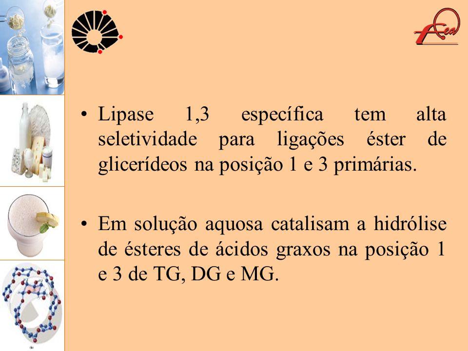 Lipase 1,3 específica tem alta seletividade para ligações éster de glicerídeos na posição 1 e 3 primárias. Em solução aquosa catalisam a hidrólise de