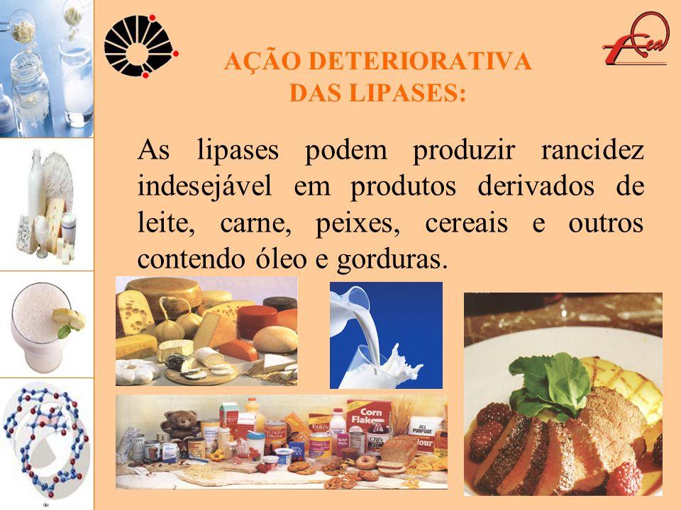 AÇÃO DETERIORATIVA DAS LIPASES: As lipases podem produzir rancidez indesejável em produtos derivados de leite, carne, peixes, cereais e outros contend