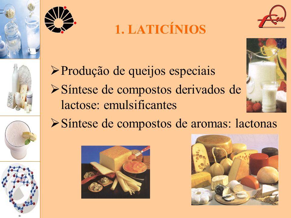 1. LATICÍNIOS Produção de queijos especiais Síntese de compostos derivados de lactose: emulsificantes Síntese de compostos de aromas: lactonas