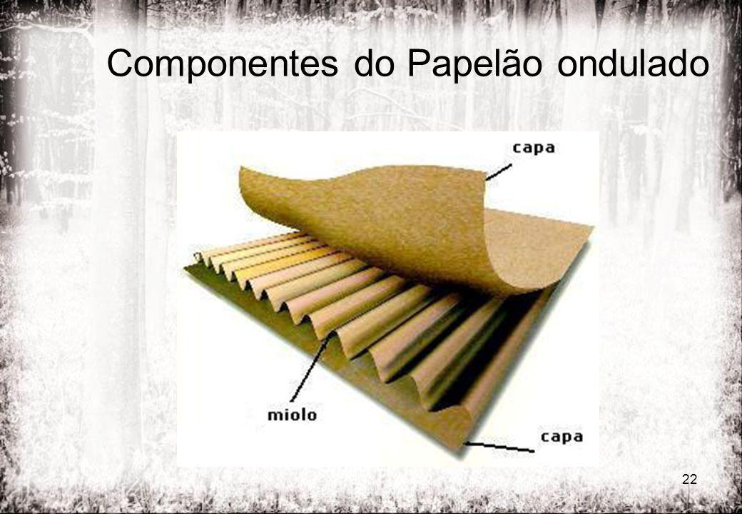 22 Componentes do Papelão ondulado