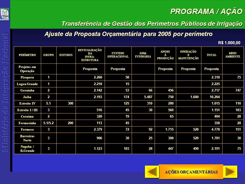 PROGRAMA / AÇÃO Transferência de Gestão dos Perímetros Públicos de Irrigação AÇÕES ORÇAMENTÁRIAS AÇÕES ORÇAMENTÁRIAS AÇÕES ORÇAMENTÁRIAS AÇÕES ORÇAMENTÁRIAS Ajuste da Proposta Orçamentária para 2005 por perímetro R$ 1.000,00