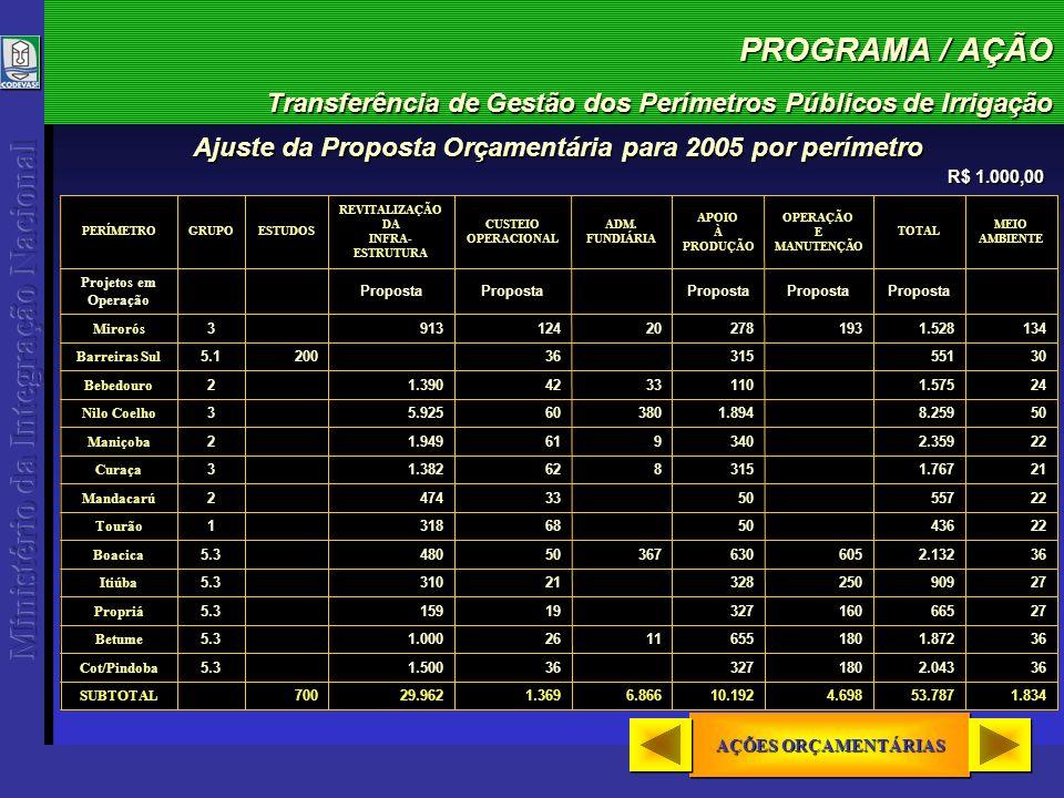 PROGRAMA / AÇÃO Transferência de Gestão dos Perímetros Públicos de Irrigação AÇÕES ORÇAMENTÁRIAS AÇÕES ORÇAMENTÁRIAS AÇÕES ORÇAMENTÁRIAS AÇÕES ORÇAMENTÁRIAS R$ 1.000,00 Ajuste da Proposta Orçamentária para 2005 por perímetro