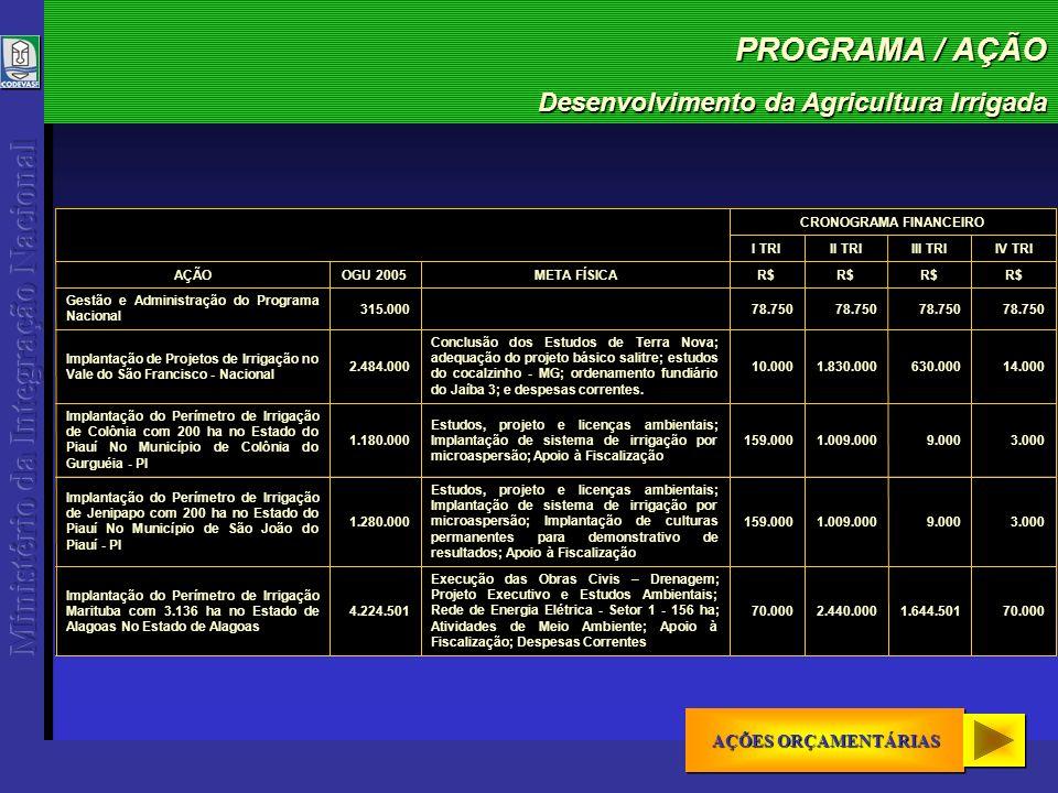 PROGRAMA / AÇÃO Desenvolvimento da Agricultura Irrigada 19.268.002TOTAL 2.205.0001.039.501340.000640.000 Montagem eletromecânica Gleba A3 e A4; Fornecimento de conjuntos Motobombas EB2; Fornecimento de válvulas, tubos; e acessórios EB2; Meio Ambiente; Despesas Correntes 4.224.501 Implantação do Perímetro de Irrigação Jaíba - 1ª Etapa - com 4.678 ha no Estado de Minas Gerais No Estado de Minas Gerais 159.000 2.092.000590.000 Execução das Obras Civis; Vigilância; Apoio á Fiscalização; Suprimento de Energia; Despesas Correntes 3.000.000 Implantação do Perímetro de Irrigação Pontal com 7.862 ha no Estado de Pernambuco No Estado de Pernambuco 3.0009.0001.759.0009.000 Instalação de equipamentos de captação d água de poços existentes, na formação Cabeças; Construção de rede de energia elétrica rural; Perfuração e instalação de poço tubular profundo, na formação Serra Grande; Aquisição de trator agrícola com implementos; Apoio à Fiscalização; Implantação de sistema de irrigação por microaspersão; Implantação de culturas permanentes para demonstrativo de resultados 1.780.000 Implantação do Projeto-Piloto de Irrigação Marrecas com 20 ha no Estado do Piauí No Município de São João do Piauí - PI 98.000176.000436.00070.000 Instalação de equipamentos para poço profundo; Construção de rede de energia elétrica rural; Construção de reservatório para poço profundo existente; Manutenção de culturas permanentes; Apoio à Fiscalização; Desmatamento, enleiramento e queima; Implantação de culturas permanentes para demonstrativo de resultados 780.000 Implantação do Projeto-Piloto de Irrigação Santa Rosa com 40 ha no Estado do Piauí No Município de Santa Rosa do Piauí - PI AÇÃOOGU 2005R$ META FÍSICA IV TRIIII TRIII TRII TRI CRONOGRAMA FINANCEIRO AÇÕES ORÇAMENTÁRIAS AÇÕES ORÇAMENTÁRIAS AÇÕES ORÇAMENTÁRIAS AÇÕES ORÇAMENTÁRIAS
