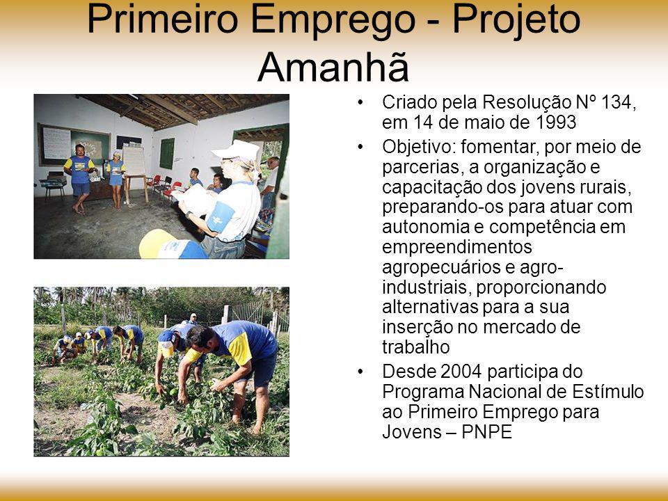 Primeiro Emprego - Projeto Amanhã As atividades do Projeto Amanhã encontram-se implantadas em cerca de 50 municípios dos estados de Minas Gerais, Bahia, Pernambuco, Sergipe, Alagoas, Piauí e Maranhão.