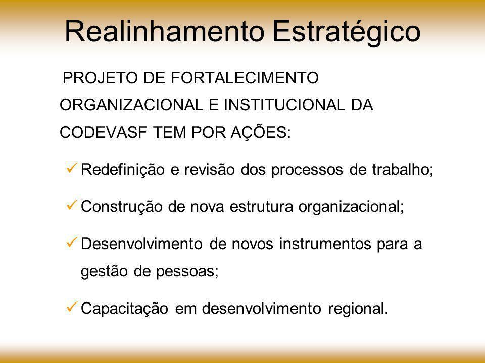 Realinhamento Estratégico O PROJETO DE FORTALECIMENTO ORGANIZACIONAL E INSTITUCIONAL DA CODEVASF TEM POR AÇÕES: Redefinição e revisão dos processos de trabalho; Construção de nova estrutura organizacional; Desenvolvimento de novos instrumentos para a gestão de pessoas; Capacitação em desenvolvimento regional.