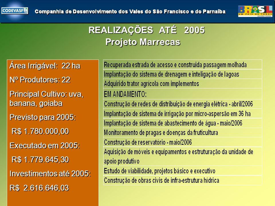 Área Irrigável: 22 ha Nº Produtores: 22 Principal Cultivo: uva, banana, goiaba Previsto para 2005: R$ 1.780.000,00 R$ 1.780.000,00 Executado em 2005: R$ 1.779.645,30 R$ 1.779.645,30 Investimentos até 2005: R$ 2.616.646,03 REALIZAÇÕES ATÉ 2005 Projeto Marrecas