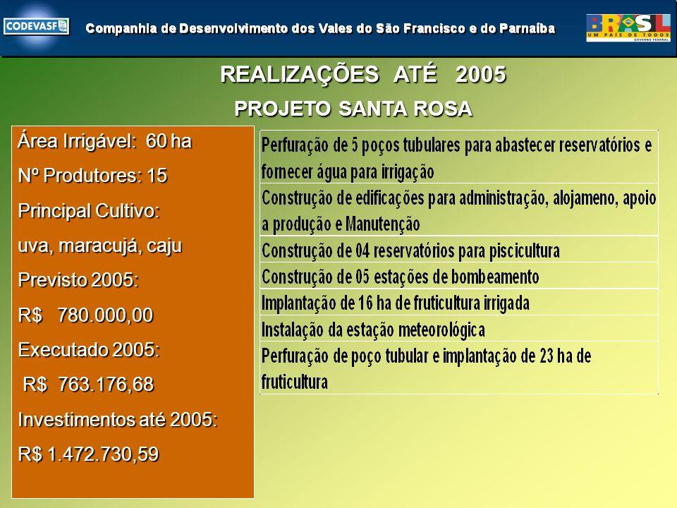Área Irrigável: 60 ha Nº Produtores: 15 Principal Cultivo: uva, maracujá, caju Previsto 2005: R$ 780.000,00 Executado 2005: R$ 763.176,68 R$ 763.176,68 Investimentos até 2005: R$ 1.472.730,59 PROJETO SANTA ROSA REALIZAÇÕES ATÉ 2005