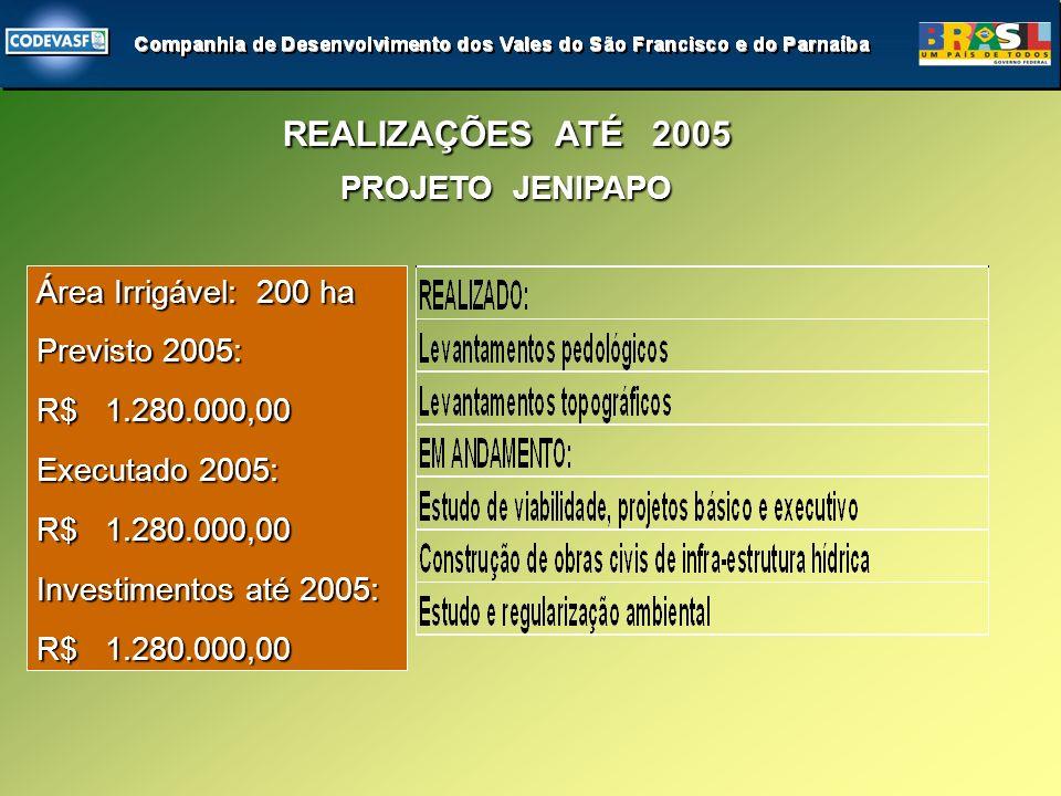 PROJETO JENIPAPO REALIZAÇÕES ATÉ 2005 Área Irrigável: 200 ha Previsto 2005: R$ 1.280.000,00 Executado 2005: R$ 1.280.000,00 Investimentos até 2005: R$ 1.280.000,00