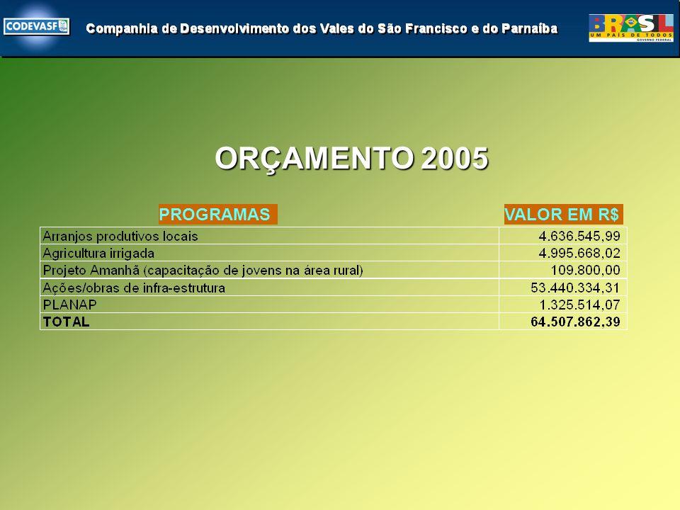 ORÇAMENTO 2005 PROGRAMASVALOR EM R$