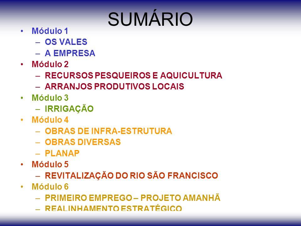 SUMÁRIO Módulo 1 –OS VALES –A EMPRESA Módulo 2 –RECURSOS PESQUEIROS E AQUICULTURA –ARRANJOS PRODUTIVOS LOCAIS Módulo 3 –IRRIGAÇÃO Módulo 4 –OBRAS DE INFRA-ESTRUTURA –OBRAS DIVERSAS –PLANAP Módulo 5 –REVITALIZAÇÃO DO RIO SÃO FRANCISCO Módulo 6 –PRIMEIRO EMPREGO – PROJETO AMANHÃ –REALINHAMENTO ESTRATÉGICO