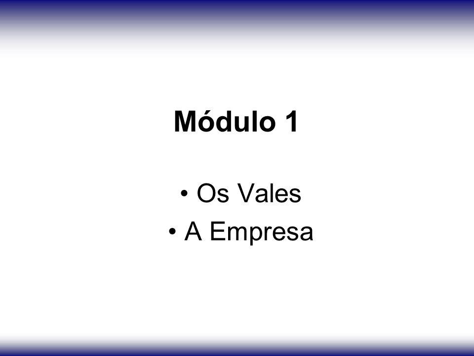Módulo 1 Os Vales A Empresa