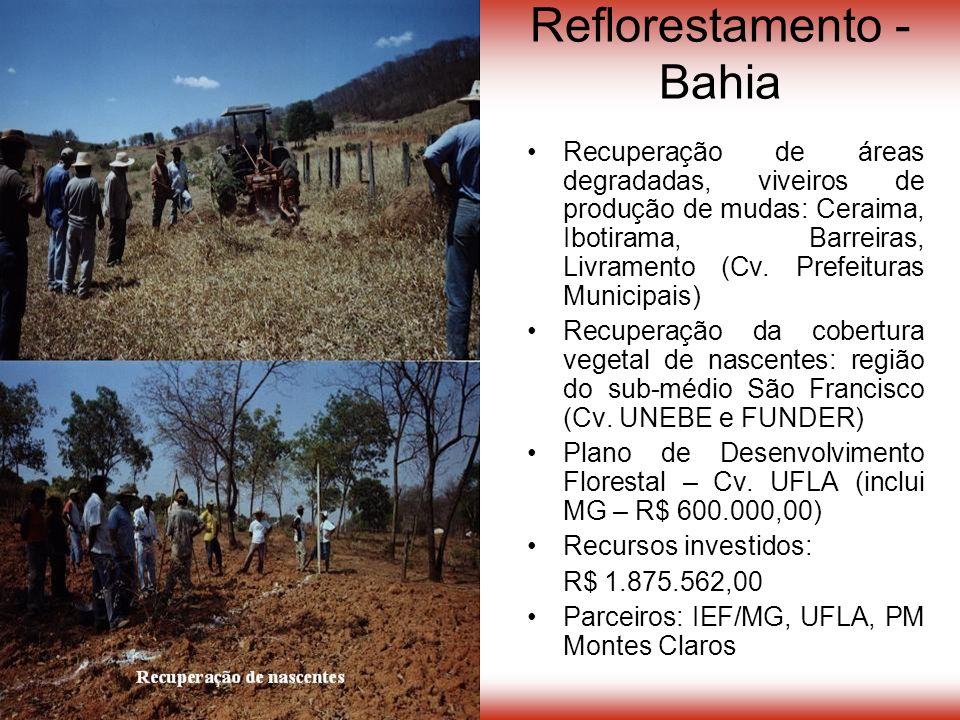 Reflorestamento - Bahia Recuperação de áreas degradadas, viveiros de produção de mudas: Ceraima, Ibotirama, Barreiras, Livramento (Cv.