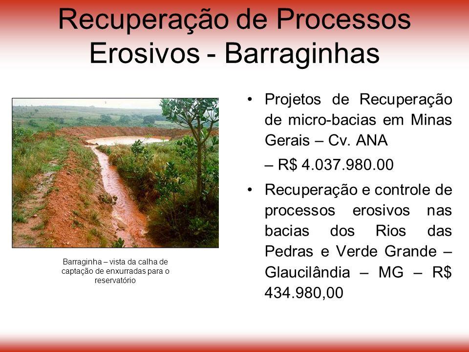 Projetos de Recuperação de micro-bacias em Minas Gerais – Cv.