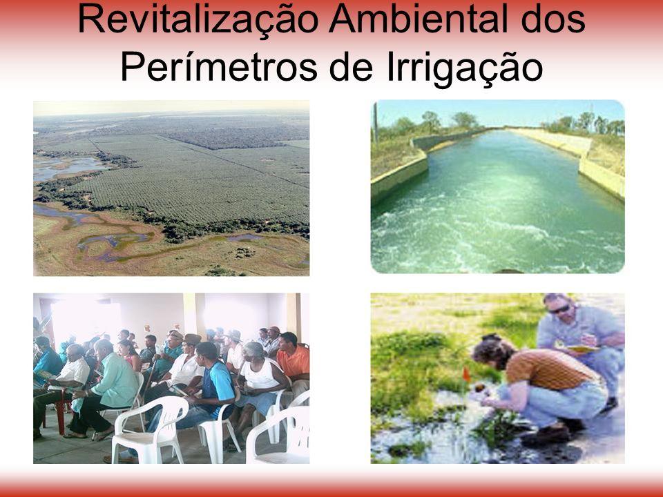 Revitalização Ambiental dos Perímetros de Irrigação