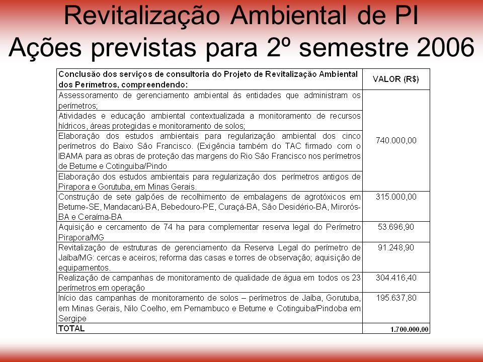 Revitalização Ambiental de PI Ações previstas para 2º semestre 2006