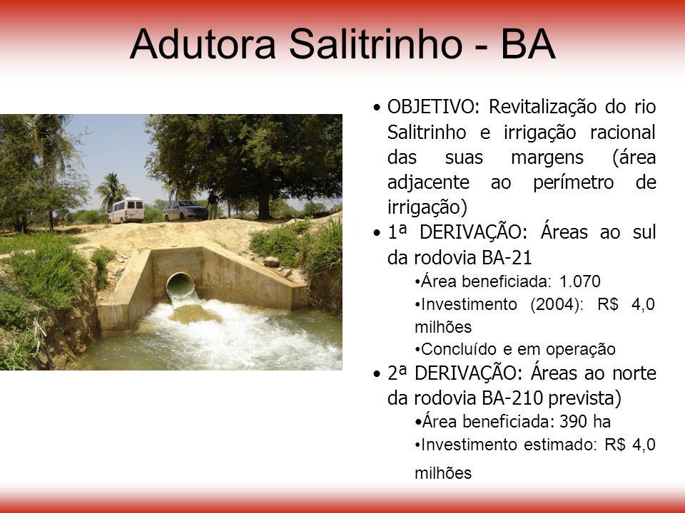 Adutora Salitrinho - BA OBJETIVO: Revitalização do rio Salitrinho e irrigação racional das suas margens (área adjacente ao perímetro de irrigação) 1ª DERIVAÇÃO: Áreas ao sul da rodovia BA-21 Área beneficiada: 1.070 Investimento (2004): R$ 4,0 milhões Concluído e em operação 2ª DERIVAÇÃO: Áreas ao norte da rodovia BA-210 prevista) Área beneficiada: 390 ha Investimento estimado: R$ 4,0 milhões