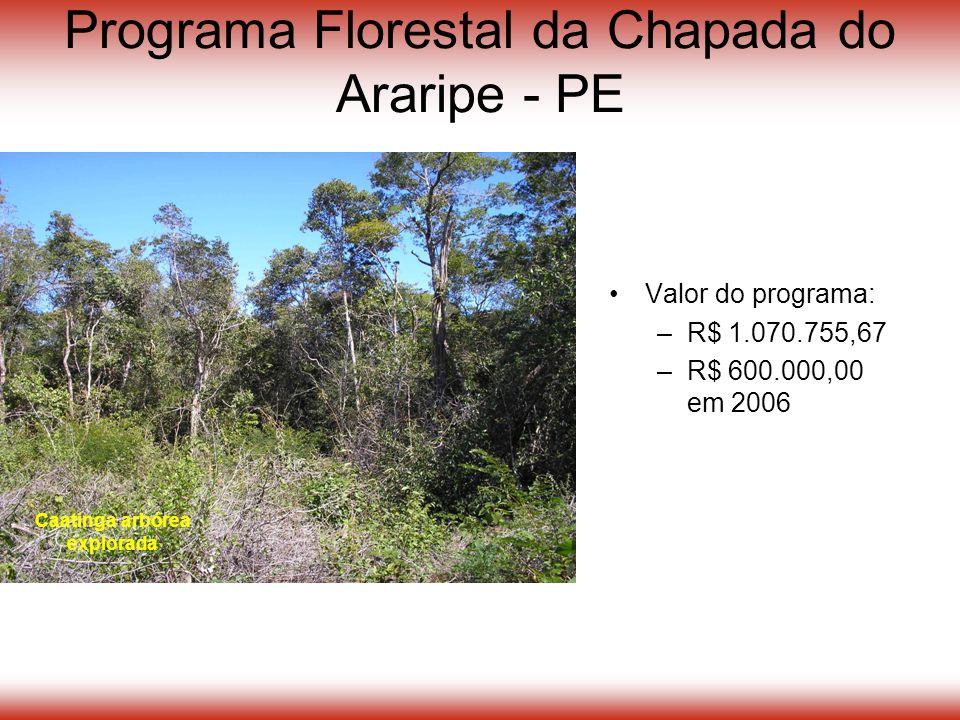 Programa Florestal da Chapada do Araripe - PE Valor do programa: –R$ 1.070.755,67 –R$ 600.000,00 em 2006 Caatinga arbórea explorada