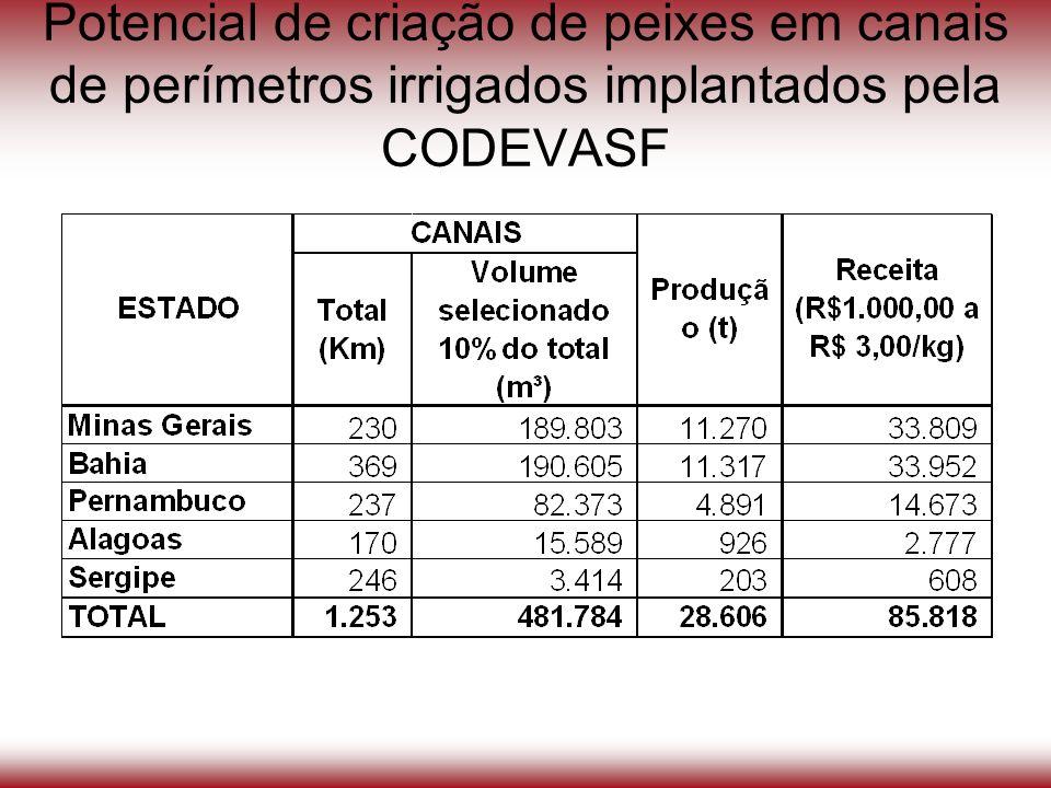 Potencial de criação de peixes em canais de perímetros irrigados implantados pela CODEVASF