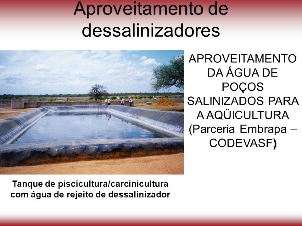 Aproveitamento de dessalinizadores APROVEITAMENTO DA ÁGUA DE POÇOS SALINIZADOS PARA A AQÜICULTURA ) (Parceria Embrapa – CODEVASF) Tanque de piscicultu