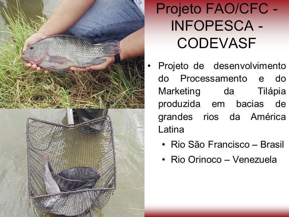 Projeto FAO/CFC - INFOPESCA - CODEVASF Projeto de desenvolvimento do Processamento e do Marketing da Tilápia produzida em bacias de grandes rios da Am