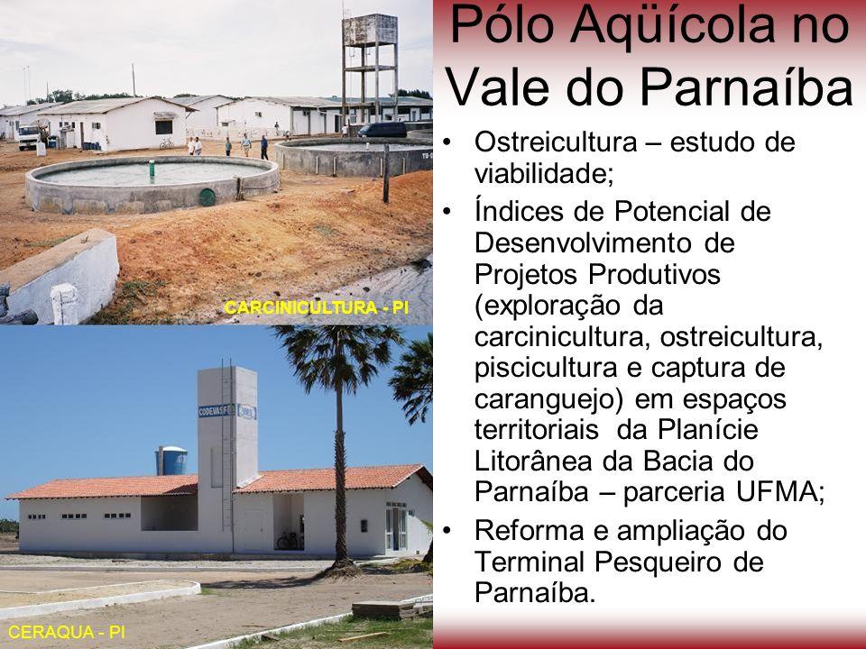 Pólo Aqüícola no Vale do Parnaíba Ostreicultura – estudo de viabilidade; Índices de Potencial de Desenvolvimento de Projetos Produtivos (exploração da