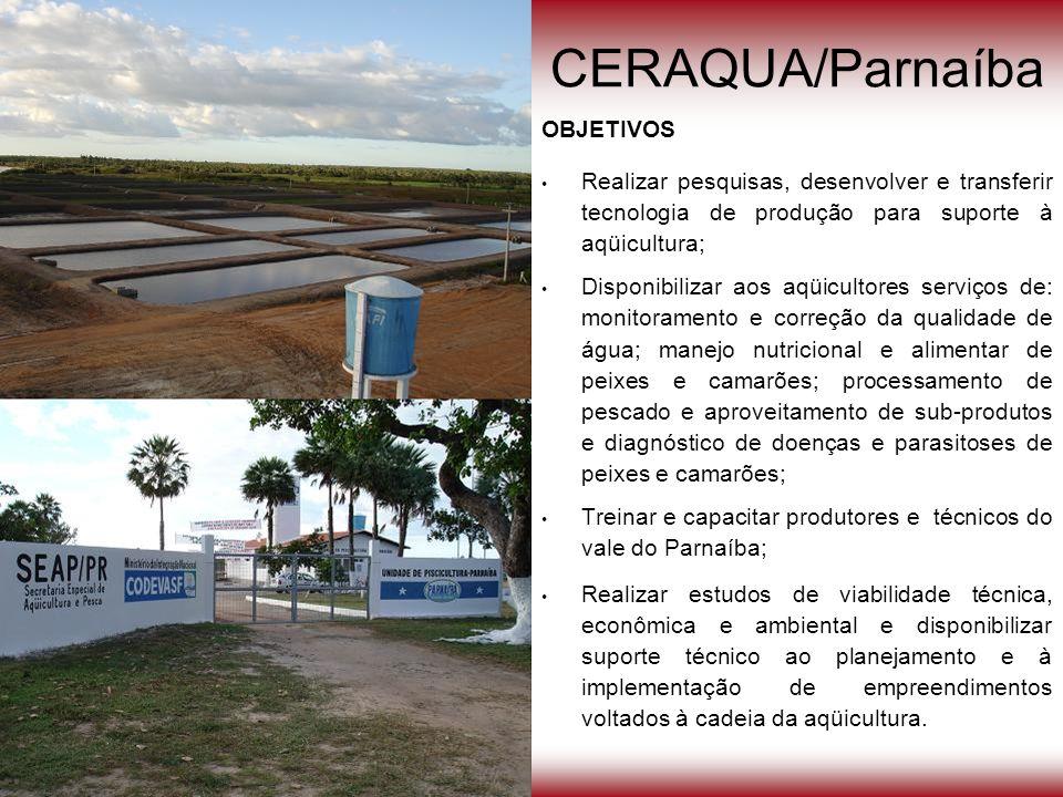 CERAQUA/Parnaíba OBJETIVOS Realizar pesquisas, desenvolver e transferir tecnologia de produção para suporte à aqüicultura; Disponibilizar aos aqüicult