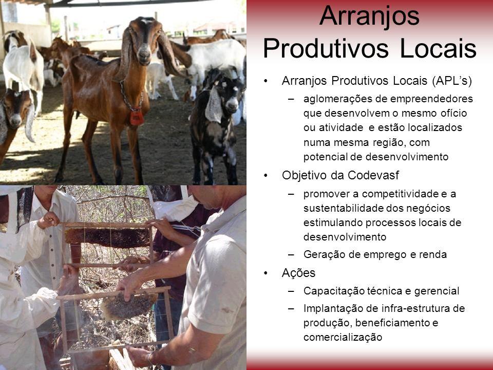 Arranjos Produtivos Locais Arranjos Produtivos Locais (APLs) –aglomerações de empreendedores que desenvolvem o mesmo ofício ou atividade e estão local