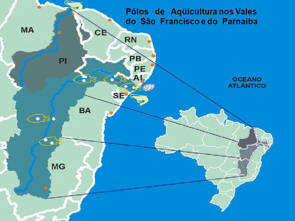 Pólos de Aqüicultura nos Vales do São Francisco e do Parnaíba