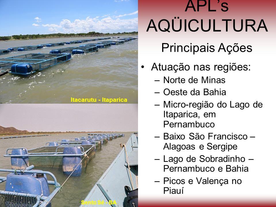 Atuação nas regiões: –Norte de Minas –Oeste da Bahia –Micro-região do Lago de Itaparica, em Pernambuco –Baixo São Francisco – Alagoas e Sergipe –Lago