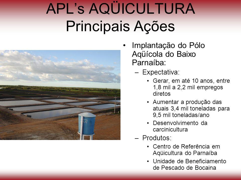 APLs AQÜICULTURA Principais Ações Implantação do Pólo Aqüícola do Baixo Parnaíba: –Expectativa: Gerar, em até 10 anos, entre 1,8 mil a 2,2 mil emprego