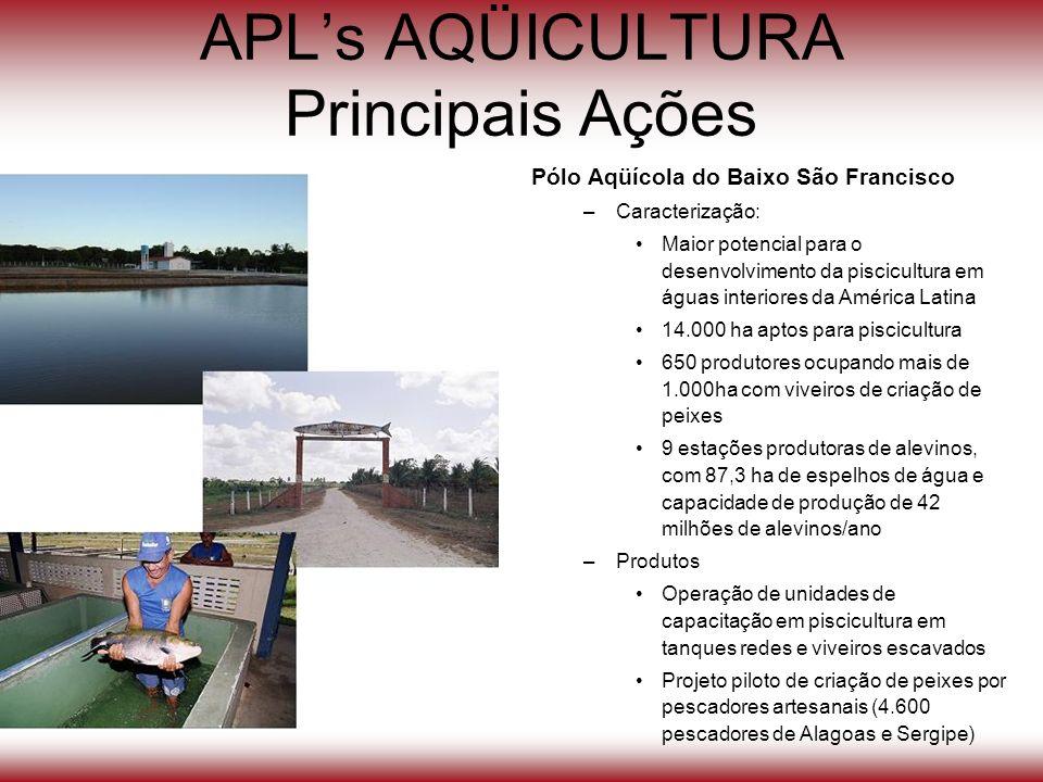 APLs AQÜICULTURA Principais Ações Pólo Aqüícola do Baixo São Francisco –Caracterização: Maior potencial para o desenvolvimento da piscicultura em água