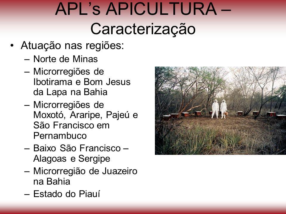 APLs APICULTURA – Caracterização Atuação nas regiões: –Norte de Minas –Microrregiões de Ibotirama e Bom Jesus da Lapa na Bahia –Microrregiões de Moxot