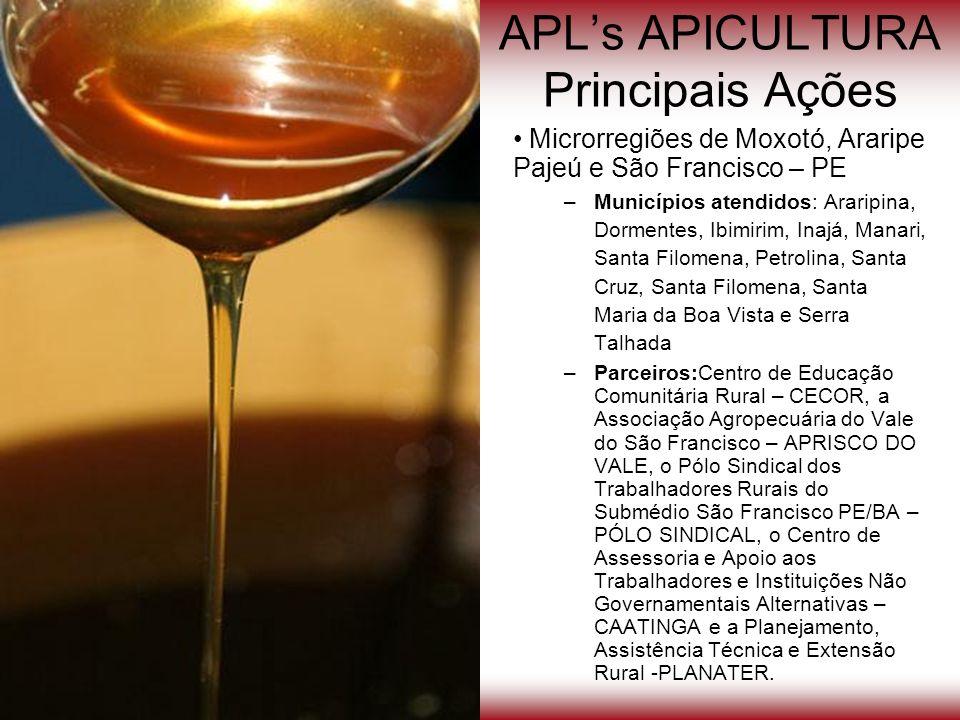 APLs APICULTURA Principais Ações Microrregiões de Moxotó, Araripe Pajeú e São Francisco – PE –Municípios atendidos: Araripina, Dormentes, Ibimirim, In