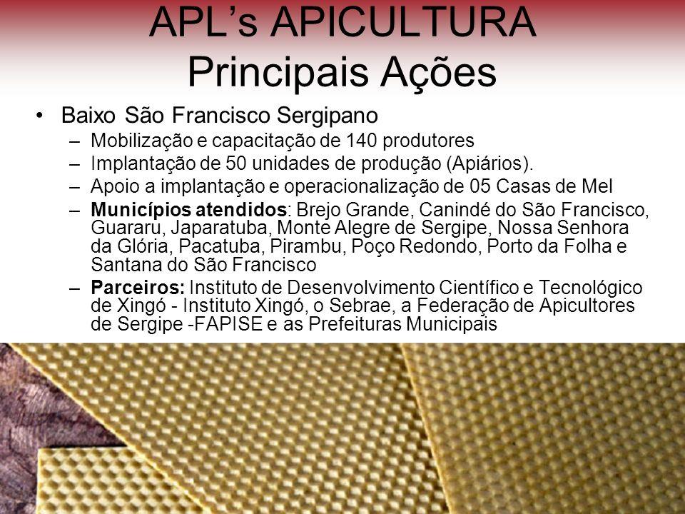 APLs APICULTURA Principais Ações Baixo São Francisco Sergipano –Mobilização e capacitação de 140 produtores –Implantação de 50 unidades de produção (A