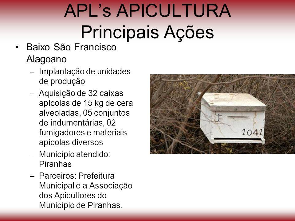 APLs APICULTURA Principais Ações Baixo São Francisco Alagoano –Implantação de unidades de produção –Aquisição de 32 caixas apícolas de 15 kg de cera a