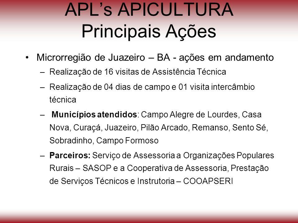APLs APICULTURA Principais Ações Microrregião de Juazeiro – BA - ações em andamento –Realização de 16 visitas de Assistência Técnica –Realização de 04