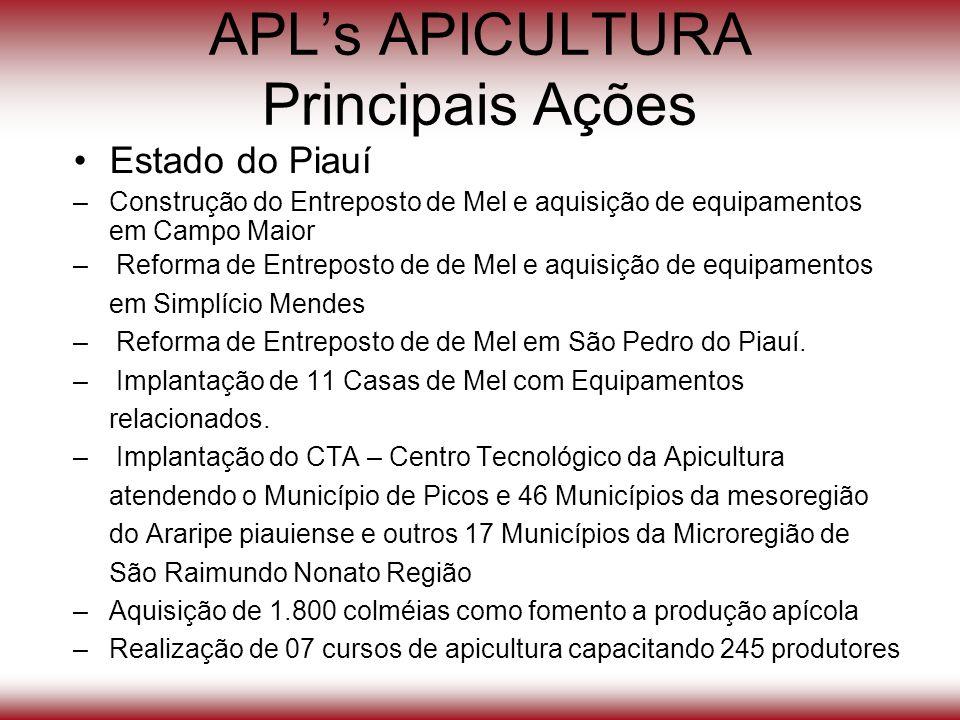 APLs APICULTURA Principais Ações Estado do Piauí –Construção do Entreposto de Mel e aquisição de equipamentos em Campo Maior – Reforma de Entreposto d