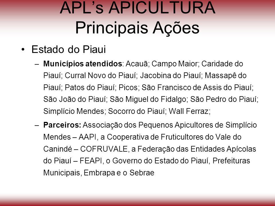 APLs APICULTURA Principais Ações Estado do Piaui –Municípios atendidos: Acauã; Campo Maior; Caridade do Piauí; Curral Novo do Piauí; Jacobina do Piauí