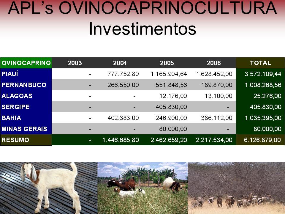 APLs OVINOCAPRINOCULTURA Investimentos Ovinos na caatinga - Juazeiro- Bahia Centro de Manejo e Reprodução de ovinos e caprinos – São João do Piauí