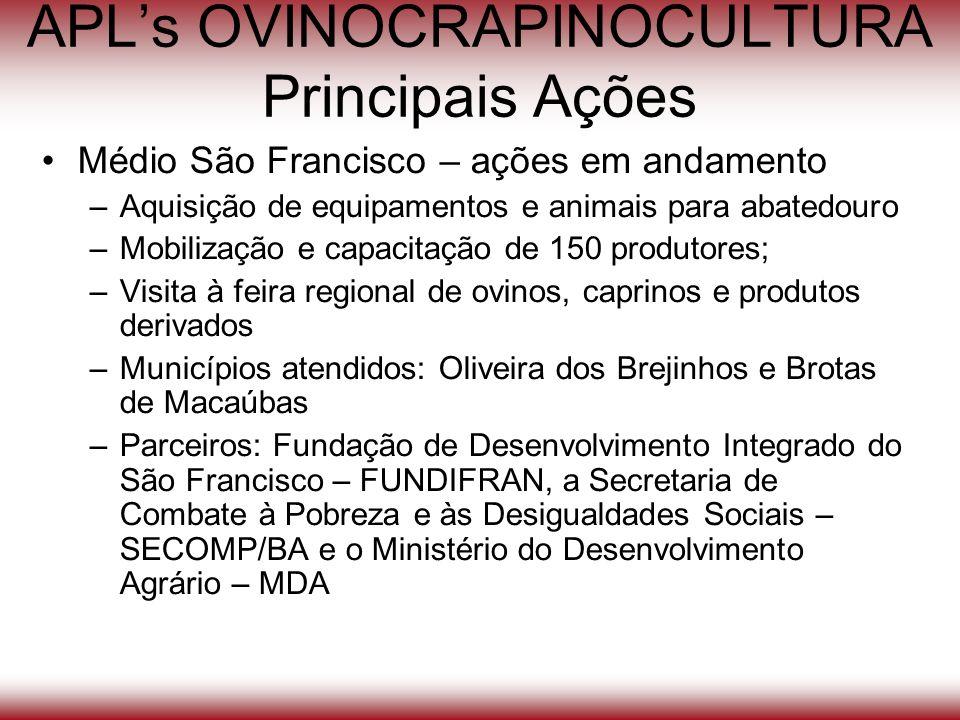 APLs OVINOCRAPINOCULTURA Principais Ações Médio São Francisco – ações em andamento –Aquisição de equipamentos e animais para abatedouro –Mobilização e