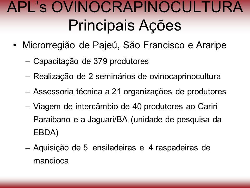 APLs OVINOCRAPINOCULTURA Principais Ações Microrregião de Pajeú, São Francisco e Araripe –Capacitação de 379 produtores –Realização de 2 seminários de