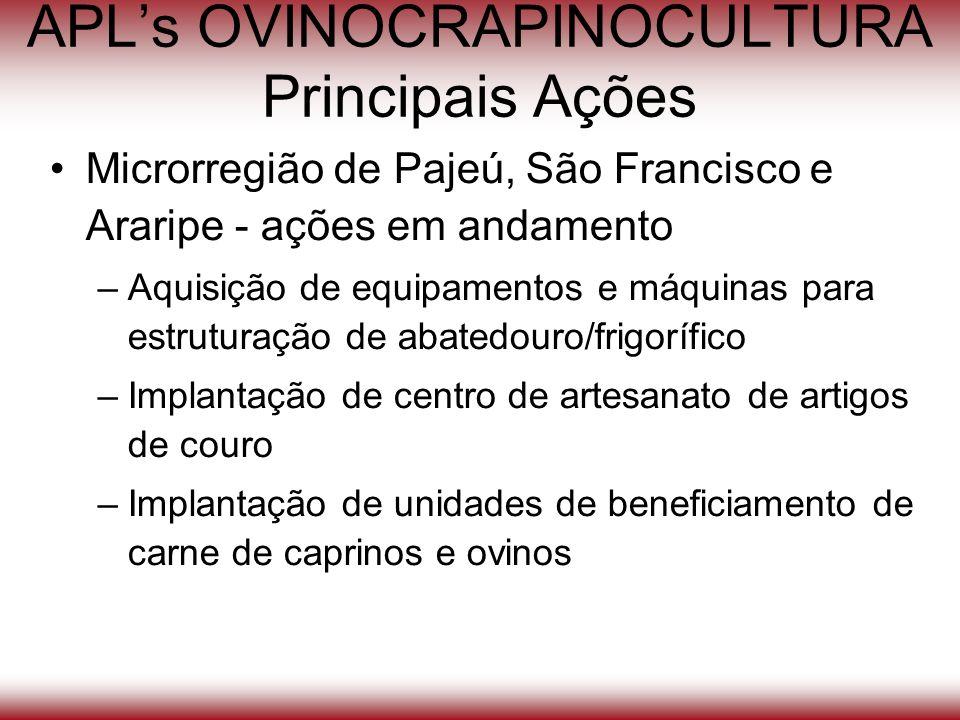 APLs OVINOCRAPINOCULTURA Principais Ações Microrregião de Pajeú, São Francisco e Araripe - ações em andamento –Aquisição de equipamentos e máquinas pa