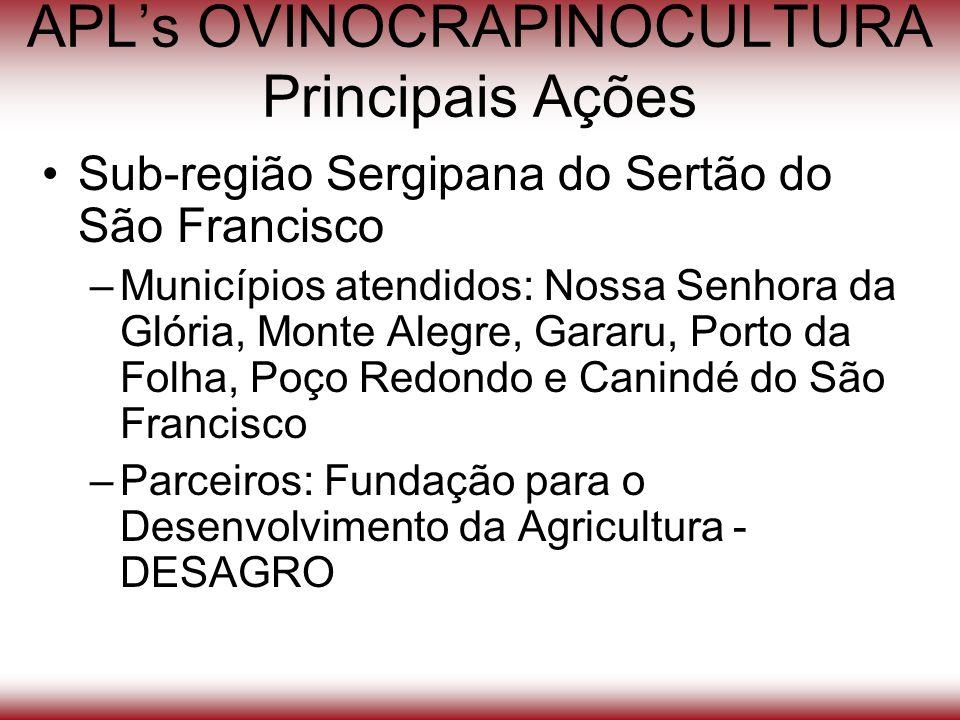 APLs OVINOCRAPINOCULTURA Principais Ações Sub-região Sergipana do Sertão do São Francisco –Municípios atendidos: Nossa Senhora da Glória, Monte Alegre